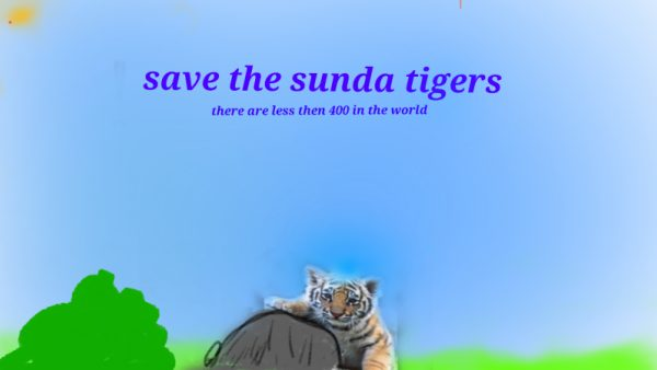 Save the sunda tigers large