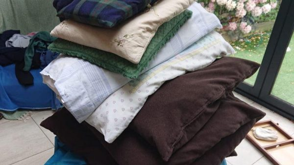 Cushions alfie large