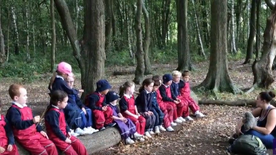 Forest School Challenges This Term