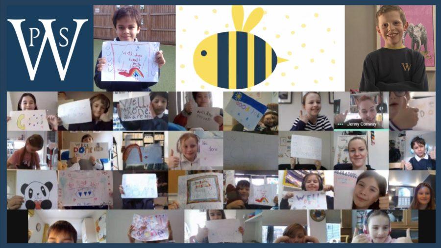 Spelling Bee Superstars