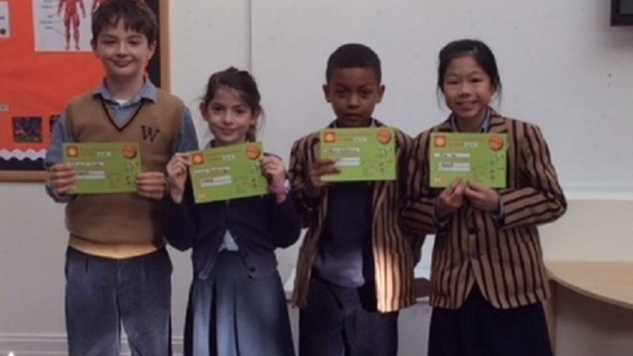 Primary Maths Challenge Achievements
