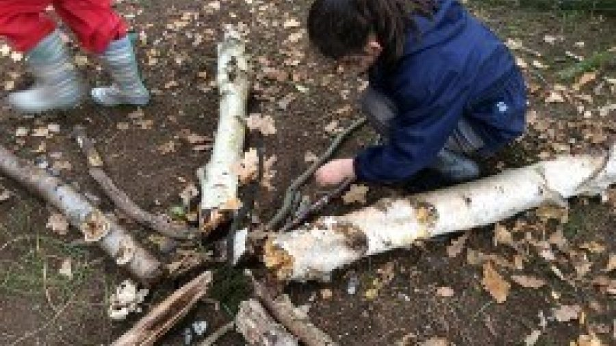 Video: Forest School with Years 2 and 3