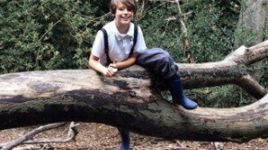 Video: Years 4, 5 and 6 at Forest School