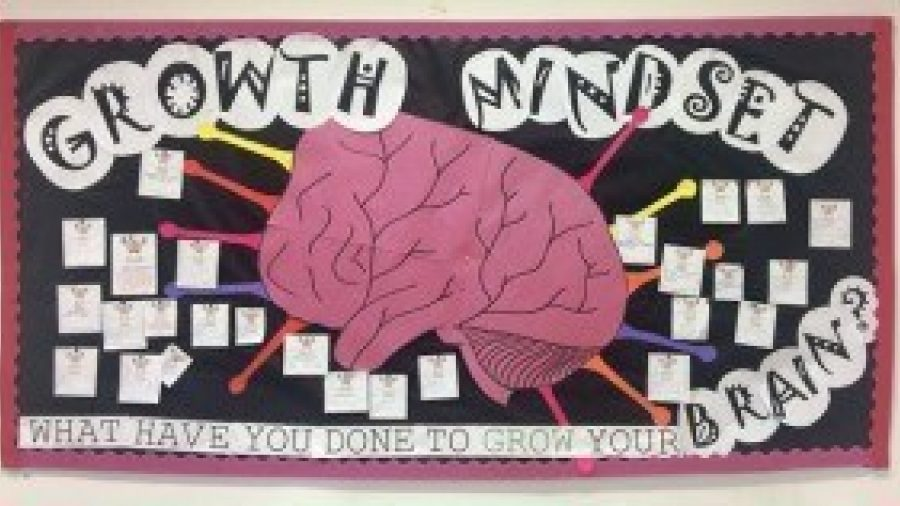 How pupils use Growth Mindset in their learning