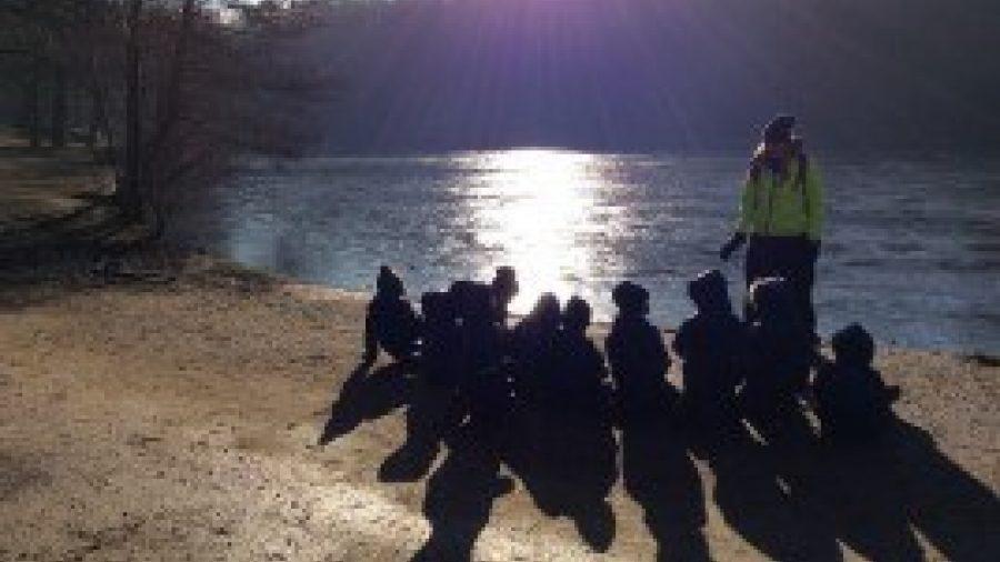Reception's Forest School Island Investigation