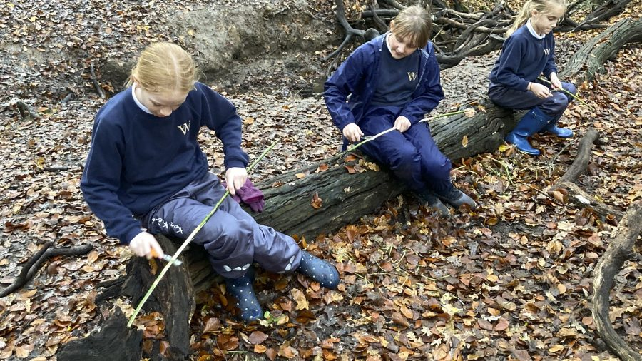 Forest School Badges
