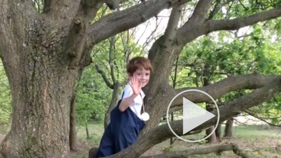Pupils Apply Knowledge and Skills for Forest School Showcase