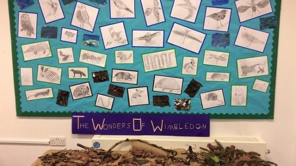 Year 6 Discover Habitats of the World