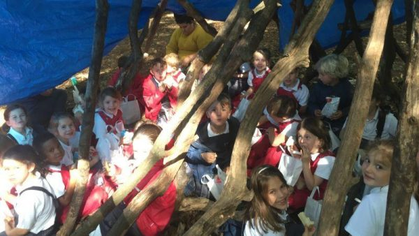 Pupils build camp at Forest School